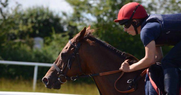 Apprentice Jockey - Image