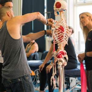 Biomechanics Education